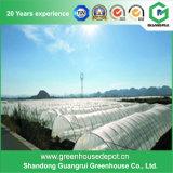 Высокий парник полиэтиленовой пленки зеленой дома выхода для засаживать