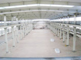 조립식 Steel Structure Workshop, Warehouse (jw-23)