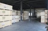도매가 Eco 용매 인쇄 기계