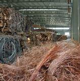 Desecho vendedor caliente 99.9% del alambre de cobre