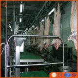 Strumentazione di macellazione del maiale con il trattamento di acque di rifiuto