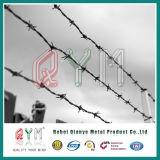 Heiße eingetauchte galvanisierte Stacheldraht-Rollen-/Grenzwand-Sicherheit/Stacheldraht-Preis
