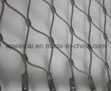 Lo stile operato Inox del puntale X-Tende la maglia del cavo di obbligazione delle scale