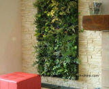 Viviendo Planter Wall Bolsa para el jardín vertical de plantación