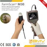 Machine vétérinaire d'ultrason d'utilisation de Farmscan M30 pour le grand test de grossesse d'animaux