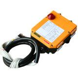 Contrôleur sans fil tenu dans la main de Radio Remote de grue (F21-6D)