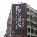 En dehors de la publicité en aluminium de rotation verticale Trivision Billboard (F3V-131S)