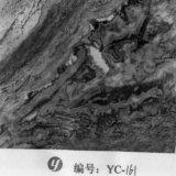 [يينغكي] [1م] عرض رماد حجارة [هدرو] رسم بيانيّ طباعة فيلم