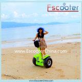 Shenzhen Factory Deux roues électriques Stand up Electric Chariot