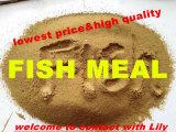 Lowest Price를 가진 Animal를 위한 물고기 Meal Powder (위로 65% 단백질)