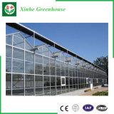 Stahlrahmen Multi-Überspannung Glas-Gewächshaus