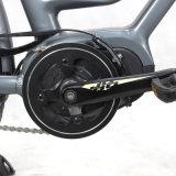 Signora verde Bike della città del Metà di-Motore 700cc di Enegery