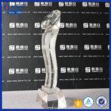 De Trofeeën van de douane kennen Modellen AcrylTrofee op Verkoop toe
