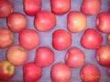 Estrella Apple roja con el precio competitivo para exportar