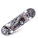 31 Inch Skate (YV-3108-1)