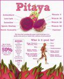Pitaya del zumo de fruta en polvo para Bebidas y Alimentos Sabor