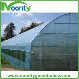 Chambre verte de Plastique-Film végétal