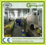 De grote Citron Afschavende Machine van het Schilmesje van de Machine van de Schil