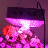 Pflanze Wasserkultur-LED der Leistungs-300W 450W 600W 800W 900W 1000W wachsen Licht