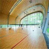 현대 디자인을%s 가진 큰 공간 강철 구조물 실내 운동장 건물