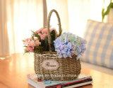 (BC-SF1005) Cesta hecha a mano popular de la flor de la paja