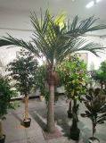 정원 훈장 인공적인 대추 야자 나무