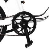 Dame Electric Bicycle mit Mag-Rad