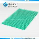 Folha de cobertura oca revestida de policarbonato com gelado geado com proteção UV