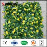 Sunwing 정원을%s 새로운 디자인 성격 플라스틱 인공적인 녹색 벽