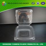 물집 포장 냉동 식품 BPA는 자유롭게 상자에 넣는다