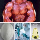 Forma fisica iniettabile di salute del corpo degli steroidi anabolici del proponiato superiore del testoterone per il Bodybuilder CAS 57-85-2