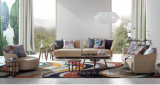Insieme americano del sofà ricoperto con l'unità di elaborazione per la mobilia del salone
