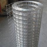 PVC塗られるか、または熱い浸された電流を通された溶接された金網(ISO9001製造業者)