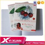Изготовленный на заказ линия английская книга Copybook 4 школы блокнот тренировки грамматики A4
