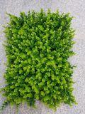 Piante di alta qualità e fiori artificiali delle stuoie Gu1118142839 dell'erba