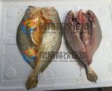 (FGB-170) Вырезывание машины Salmon живота рыб разделяя Filleting 2 части