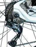 Blocco per grafici della bici di montagna/lega di alluminio/batteria di litio/bicicletta/motociclo/E-Bici elettrica/bicicletta a doppio scopo