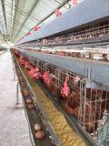 Aditivo da alimentação de Unigrow para a criação de animais da galinha