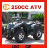 後退ギアMc373が付いている250cc ATVエンジン