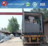 高品質の鶏のケージの中国の製造者