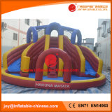 China Inflável Water Slide Fabricante / PVC Water Bouncer Slide (T11-309)