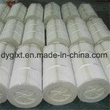 Cartuccia di filtro rivestita dal poliestere di plastica del coperchio