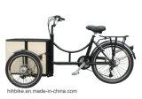 250 Вт мини-электрический груза Trike для продажи с переднего и заднего бункера