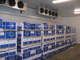 Quarto frio comercial para armazenamento de alimentos