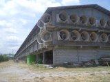 De ventilator van de Ventilatie van het Gevogelte van de ventilator van de Ventilatie van de Schuur van het varken