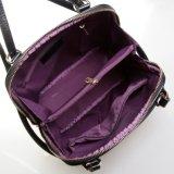 De Rugzak van het Merk van de Manier van dame Leather Travel Bag Desinger Schooltas
