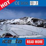 Gerät für Ski auf dem Eis-Gericht