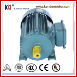 einphasiges 380V Asycnchronous Induktions-Motor von China
