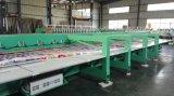 Machine de broderie de Chenille de bonne qualité de Chine pour le tissu