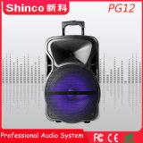 Shinco 12 Polegadas Parte móvel DJ Carrinho de Karaoke Alto-falante Bluetooth sem fio